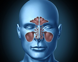 Animation of nasal passages